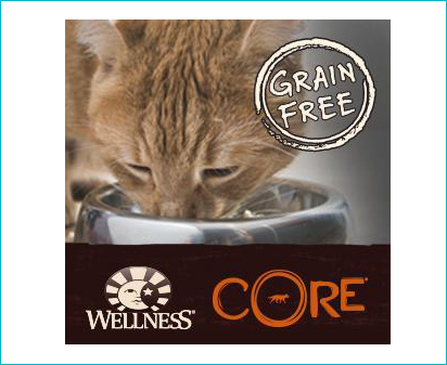 Wellness Core Dry Cat Food Kitten