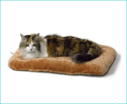 MidWest Homes for Pets Midwest Cat Bed